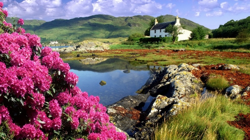 fond d'écran wallpaper paysage Irlande nature maison colline fleur photo bureau Windows desktop smartphone tablette